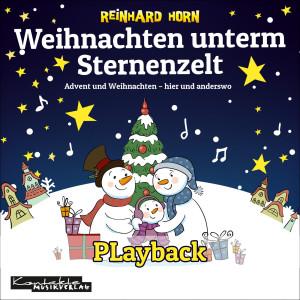 Weihnachten unterm Sternenzelt (Playback)
